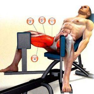 Зведення ніг в тренажері - прекрасний спосіб зміцнити внутрішню частину стегна