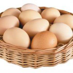 Скільки калорій в яєчному білку